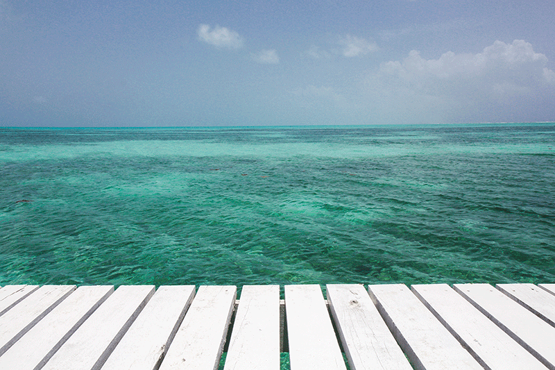 Half Moon Caye, Caye Caulker, Belize
